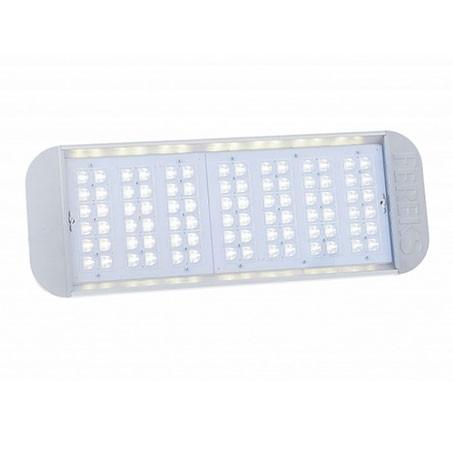 Светодиодный светильник уличный ДКУ 07-170-850-Ш2